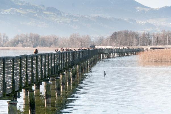 Rapperswil - zu Fuß über den Zürichsee