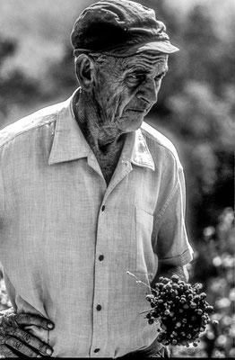 Bauer in Istrien