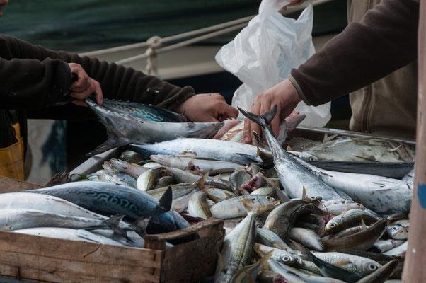 Fischmarkt in Milazzo