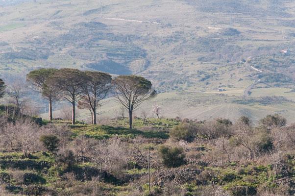Landschaft auf Sizilien