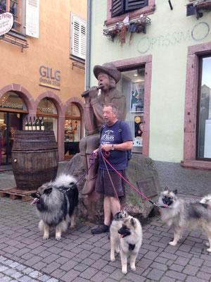 Wolfsspitz Ardeche von den Römerwölfen in Colmar