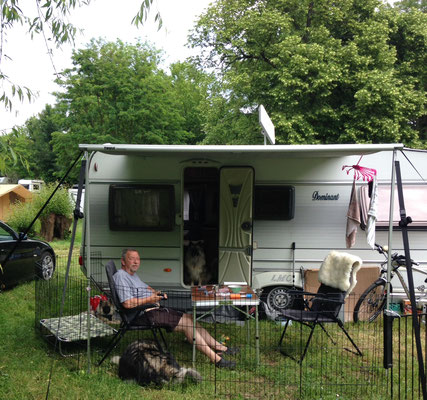 Wolfsspitz Ardeche von den Römerwölfen auf dem Campingplatz