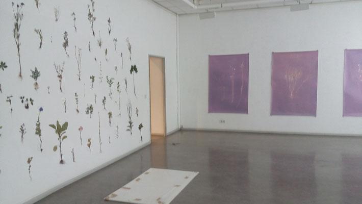 Anja Sonnenburg / Andrea Golla