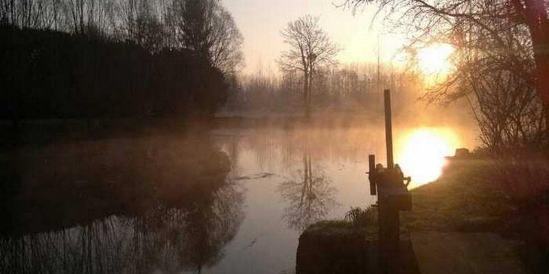 Lever du soleil sur l'étang