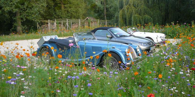 Le parking entouré de jachère fleurie