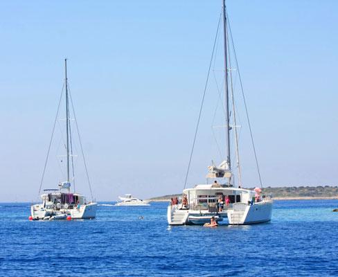 Luxus-Katamaran chartern Dalmatien Istrien Kornaten