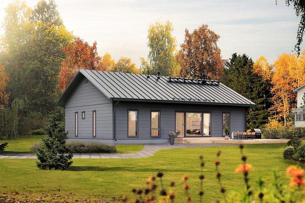 Maison en bois N°41