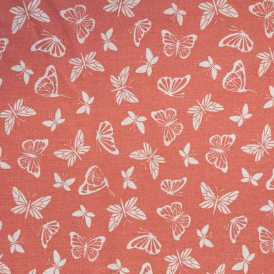 D135 Schmetterlinge