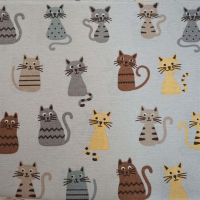 D70 Katzen