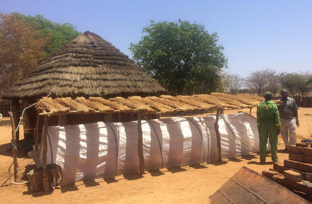 Douglas Ncube's homestead with a biogas unit installed and protective thatched roof erected