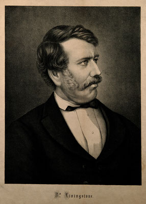 Lithograph of David Livingstone. Click pic to view Wikimedia source