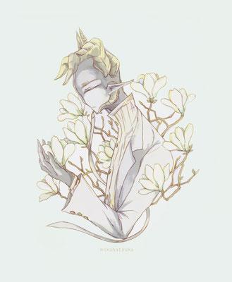 solitary 白木蓮とマノリア