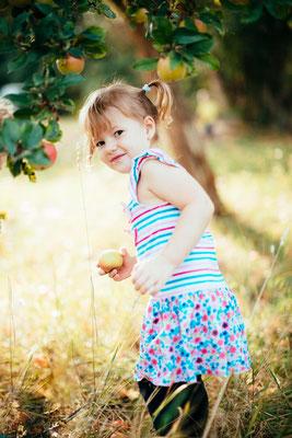 Kind holt Apfel von Wiese