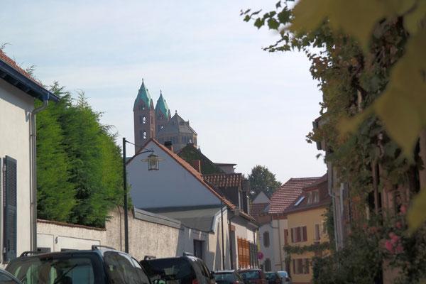 Domspitze : Hasenpfuhl