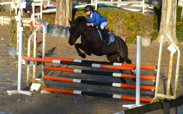 Brock Song n Dance, nov 2016, Poney Elite D