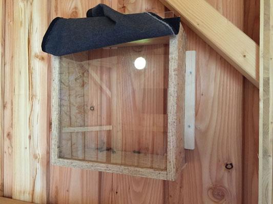 """Ein aufgedeckter Nistkasten - bei geschlossener Tür ist es dunkel in der Brutbeobachtungsstation sodass das Tuch zum """"Blick ins Nest""""abgehoben werden kann"""
