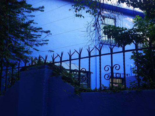 Barrio Condesa