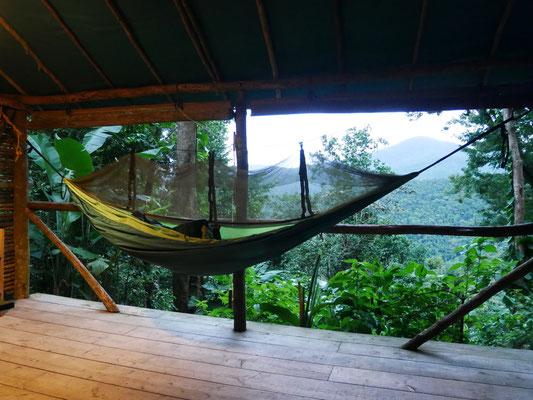 Hamac vue jungle