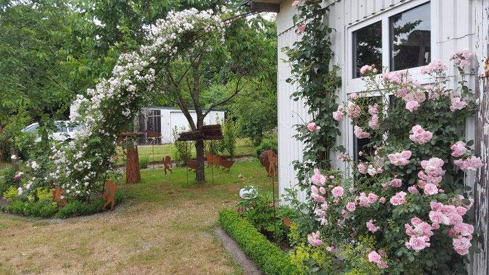 a13c6176020dd3 Schöne Dinge für Haus und Garten · Shop · Rankhilfen. Rankhilfen