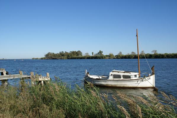 Ebromündung nahe Illa de Buda