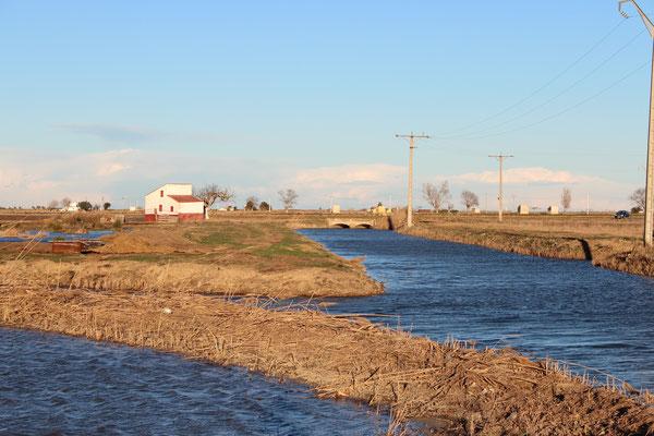 Kanal auf Ebrodelta (Reisanbau)