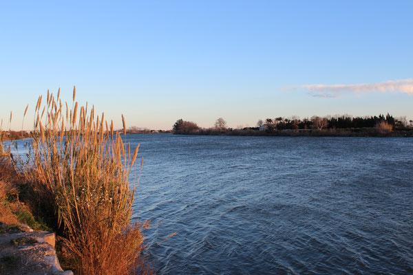 Fluss Ebro nahe Deltebre