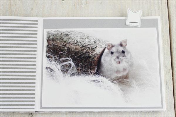 Minialbum, scrappen, Hamster