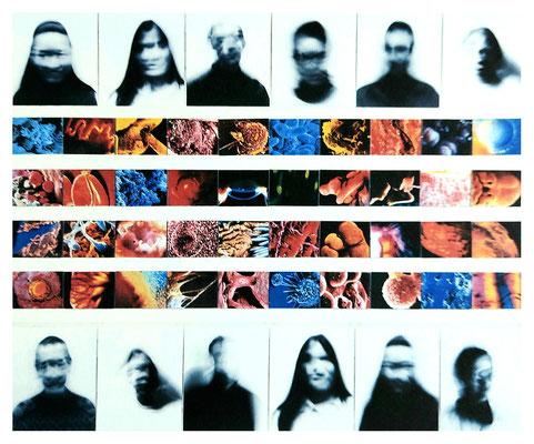 Organköpfe 52-teilig 300x200cm Foto/Laserkopie 1998