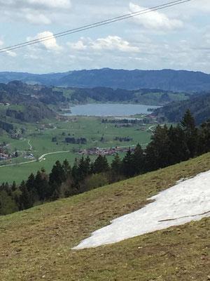 Blick vom Hündle auf den Alpsee bei Immenstadt 04/2015
