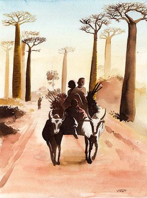 Allée des baobabs Maddagascar -aquarelle 30x40