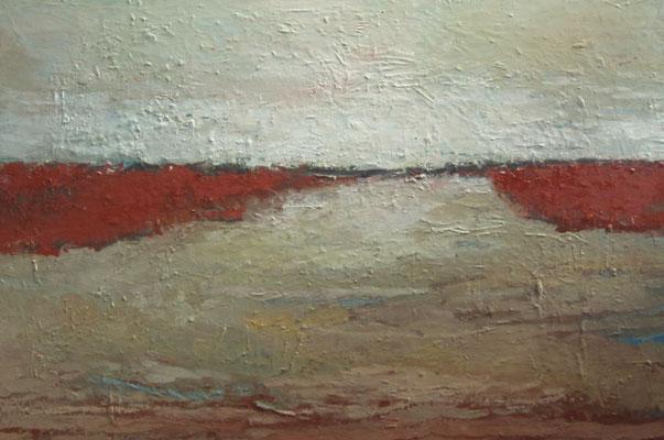 Land en water - 2014 - 80 x 120cm - oil on canvas