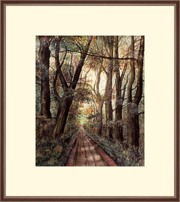 Titel: Waldweg- Aquarell 25 x 30 cm