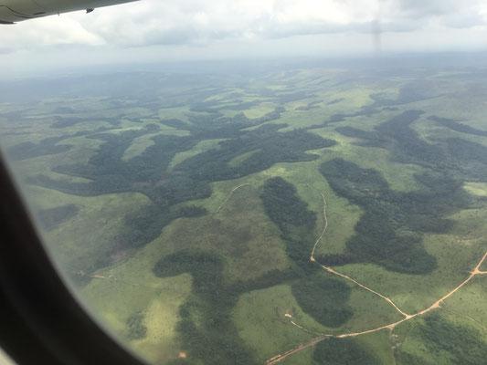 飛行機の窓から丘と森がみえます。