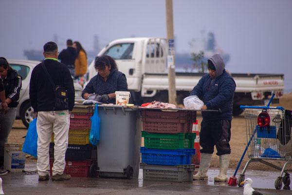 Fischmarkt in Vina del Mar, nahe Valparaiso