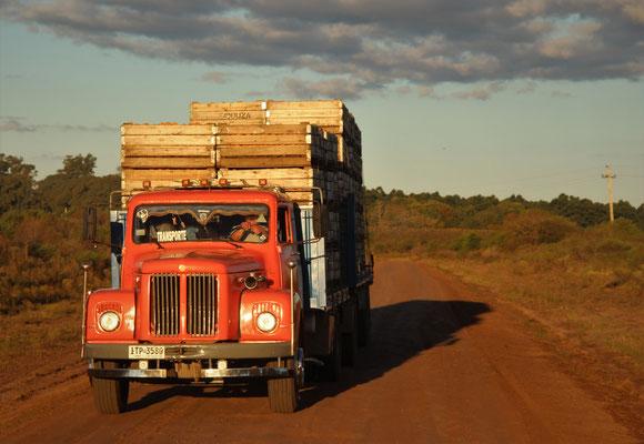 Ein alter Scania in Argentinien