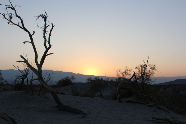 Sonnenaufgang über der Wüste 2