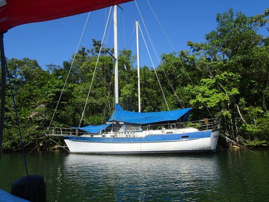Seit der amerikanische Wetterdienst den See am Rio Dulce als halbwegs hurrikansicher eingestuft hat, wettern hier viele Yachtbesitzer die Hurrikansaison ab