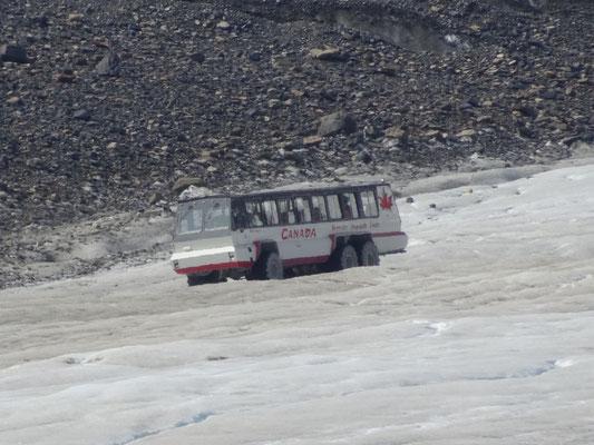 Die Busse, die auf die Gletscher fahren