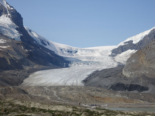 Gletscher am Columbia-Icefield