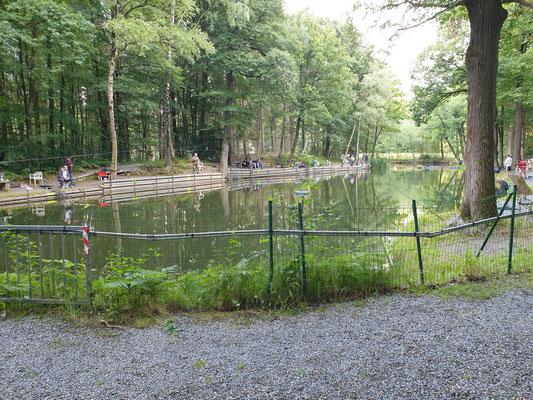Zugang Buchenbusch