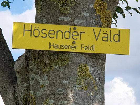 Hausener Feld
