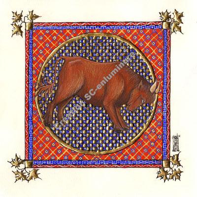 Signe du zodiaque enluminé Taureau. Enluminure originale. Création SC-enluminure. Sandra Clerbois