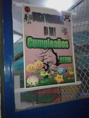 Foto enviada por Daiana - Argentina - Plantas vs Zombies