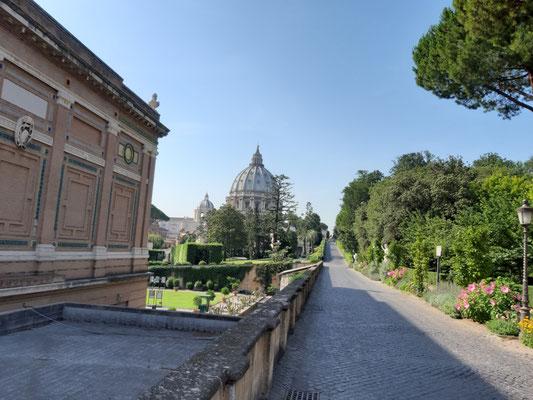 Auf dem Weh zu den Gärten des Vatikans