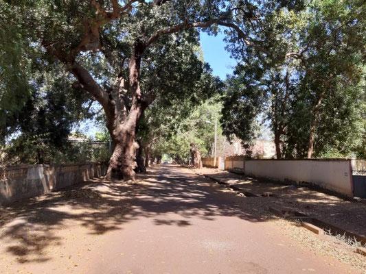 Straße im Kolonialviertel von Segu
