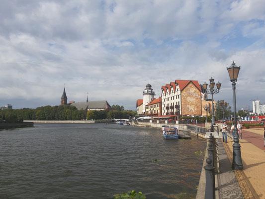 Blick über den Pregel nach Fischhausen und zum Dom, Kaliningrad