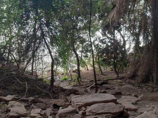 Blick aus der Grotte Fanfaba