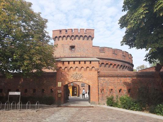 Bernsteinmuseum, Kaliningrad