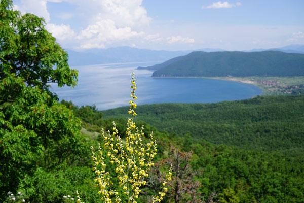 Im Galicica-Nationalpark, Blick auf den Prespa-See