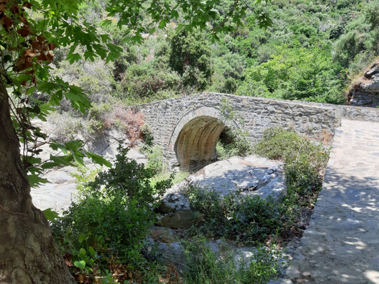Von Dafni zum Kloster Pandeleimonos
